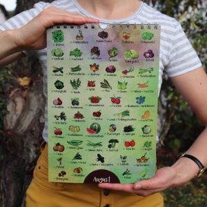Saisonkalender Obst und Gemüse August